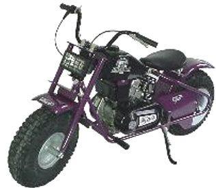 TrailSport Buffalo Mini Bike