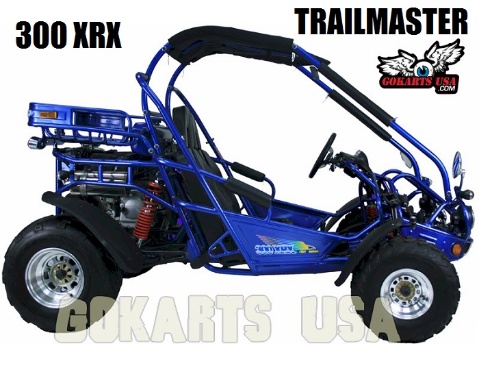 TrailMaster 300 XRX Deluxe Fully Loaded $3,799
