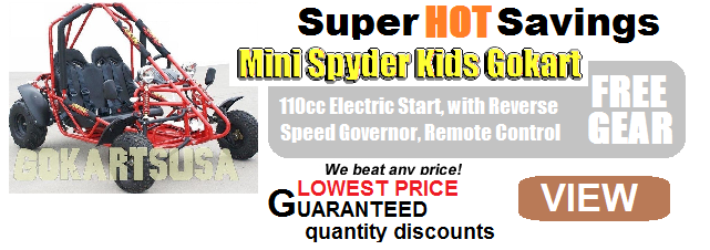 Kandi Mini Spider 110 Kids Gokart $1,288