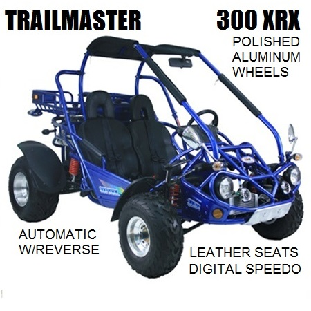 TrailMaster 300 XRX Buggy $3,899