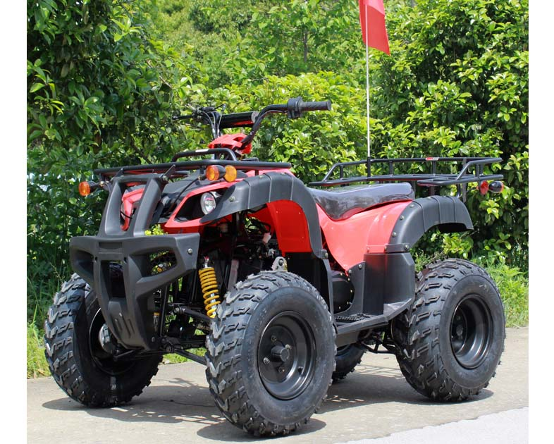 Roketa ATV 118A 200, 10 inch Tires, Auto with Reverse