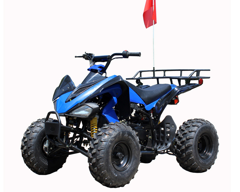 Roketa ATV 119A 200, 10 inch Tires, Auto with Reverse