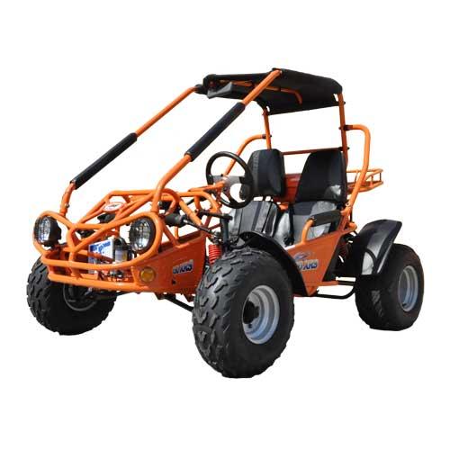 150 Buggy Go Kart Trailmaster Cvt Automatic