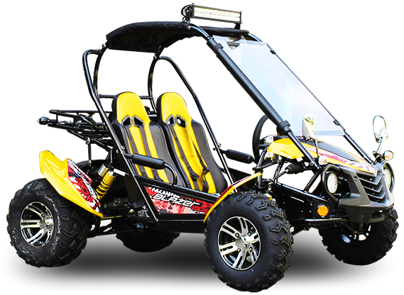 TrailMaster Blazer 200X Buggy Go Kart, Alloy Wheels, Lights, Turn Signals, Windshield