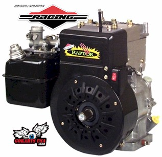 Raptor Gokart Racing Engine by Briggs & Stratton
