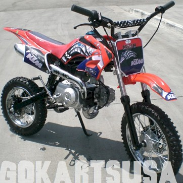 Dream 100F Mini Dirt Bike