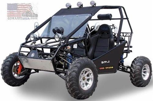 BMS Power Buggy 300: Powerbuggy Dune Buggies