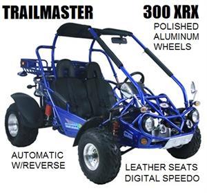TrailMaster 300 XRX Dune Buggy