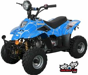 Kids 110cc, 4-STROKE, Fully Automatic, Hand & Foot Brake, 6