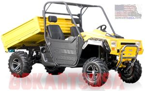 BMS Ranch Pony 1000 UTV 2-Seater