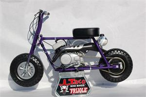 Taco Frijole Super Bee Mini Bike