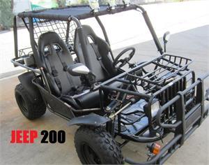 Zircon 150cc Buggy Gokart