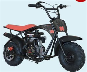 Monsta 80cc Youth Mini Bike