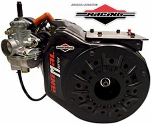 Briggs Animal M-Series Racing Engine