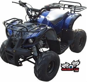 ATV-29 110cc Kids ATV