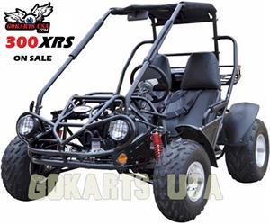 TrailMaster 300 XRS Dune Buggy Gokart