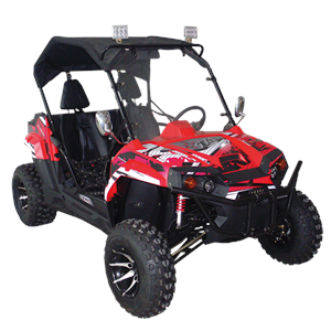 Interceptor 150 Challenger Youth & Adult UTV Side by Side