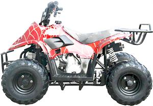 TrailMaster Mini ATV 110