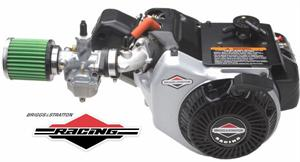 Briggs World Formula Racing Engine