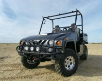 Renegade 800 2-Seater