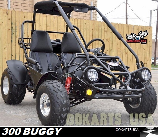 TM150_LANDING 4 300cc dune buggy go karts usa kinroad 250 buggy wiring diagram at gsmx.co
