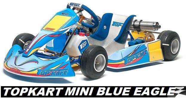 gps kart usa TopKart Mini (Cadet) Kart   GoKarts USA gps kart usa