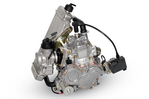 rotax 125 junior max engine