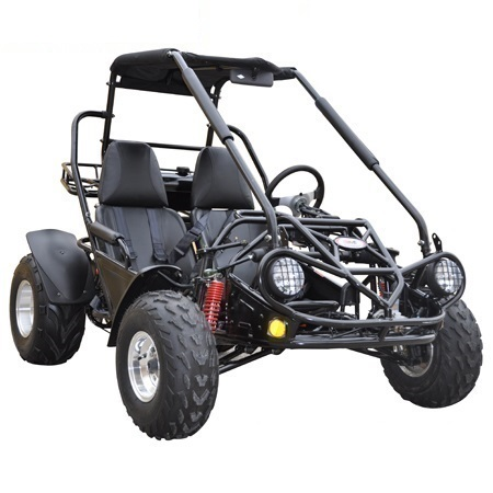 Interceptor 150 XRS Buggy Gokart