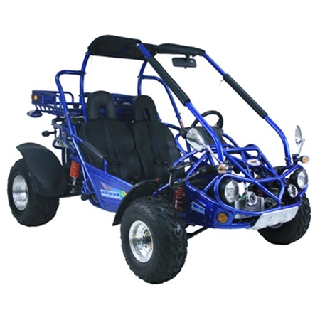 TrailMaster 300 XRX-E Dune Buggy Go Kart, Fuel Injected, Liquid Cooled, Shaft Drive