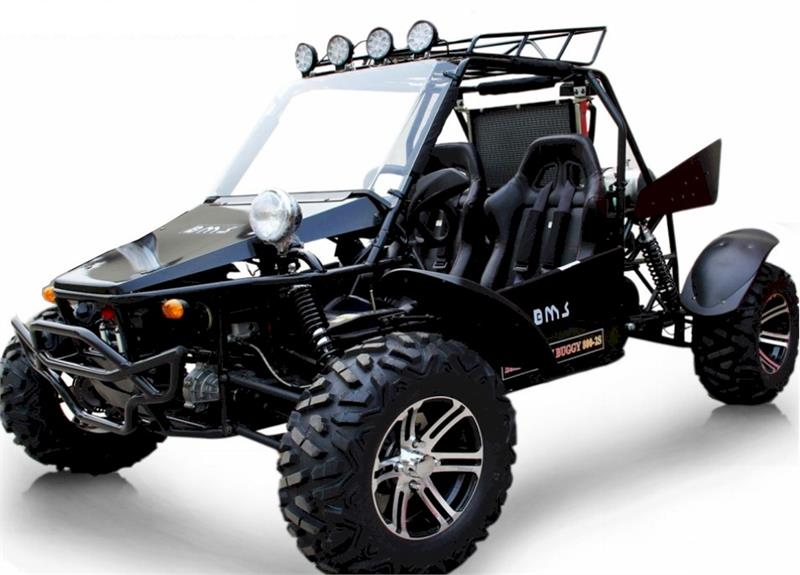 XL Model -BMS Panther 800 V-Twin Dune Buggy 4WD