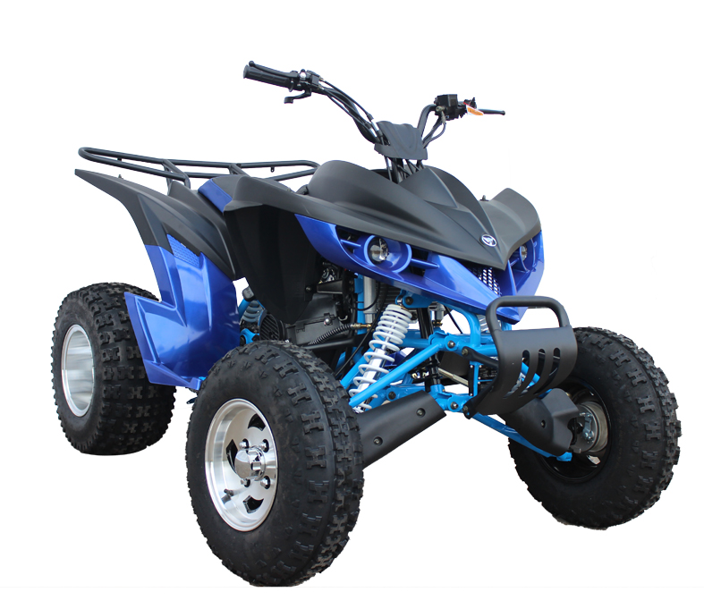 ATV 110cc 150cc 250cc on