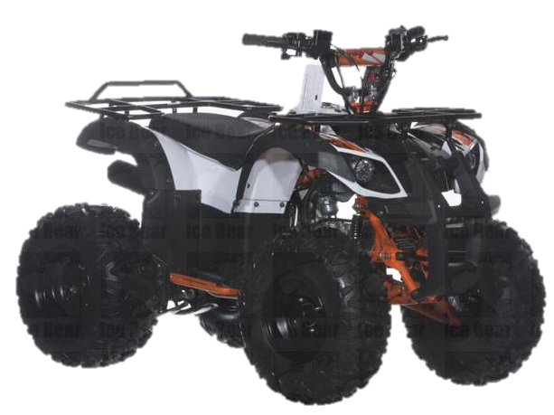 RAIDER 125(B) ATV, Automatic with Reverse