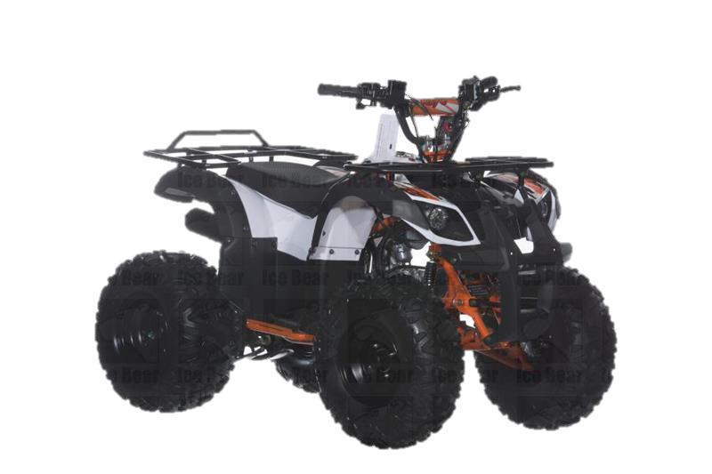 RAIDER 125 ATV, Automatic with Reverse, 8 inch Wheels