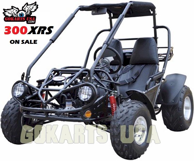 trailmaster 300 xrs dune buggy go kart go karts usa. Black Bedroom Furniture Sets. Home Design Ideas