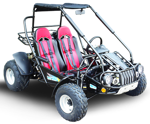 Go Karts | Buggy | over 450 Models | GoKarts USA®