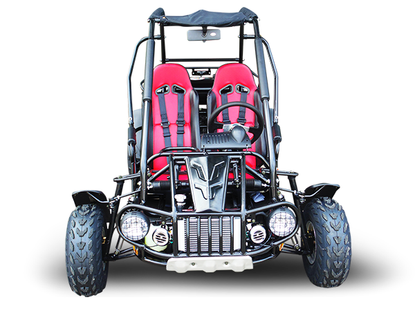 TrailMaster 300 XRS Dune Buggy Go Kart, Liquid Cooled