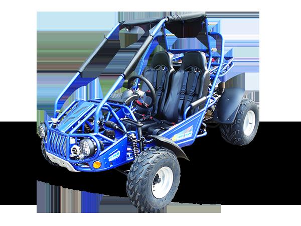 TrailMaster 300 XRS Dune Buggy Go Kart, Liquid Cooled