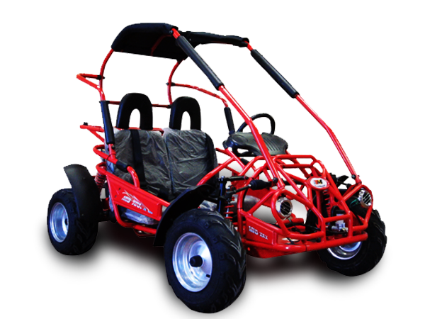 Interceptor 196XRX Buggy Go Kart, 6hp, Electric Start