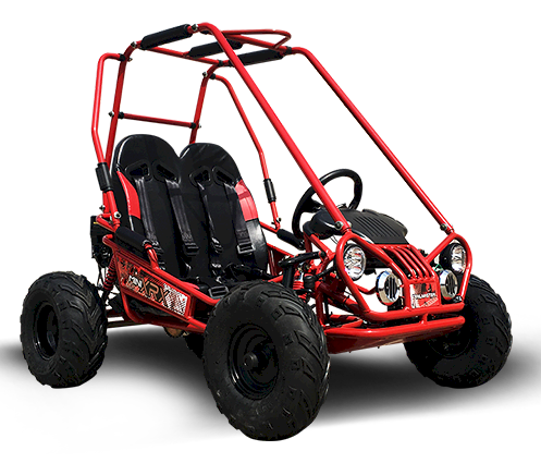 TrailMaster MINI XRX+ Kids GoKart, 5.5hp E-Start Remote Start/Kill