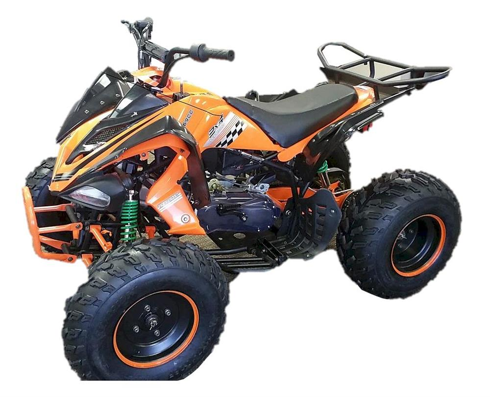 Typhoon DF200 ATV, CVT Automatic with Reverse, 8 inch Wheels
