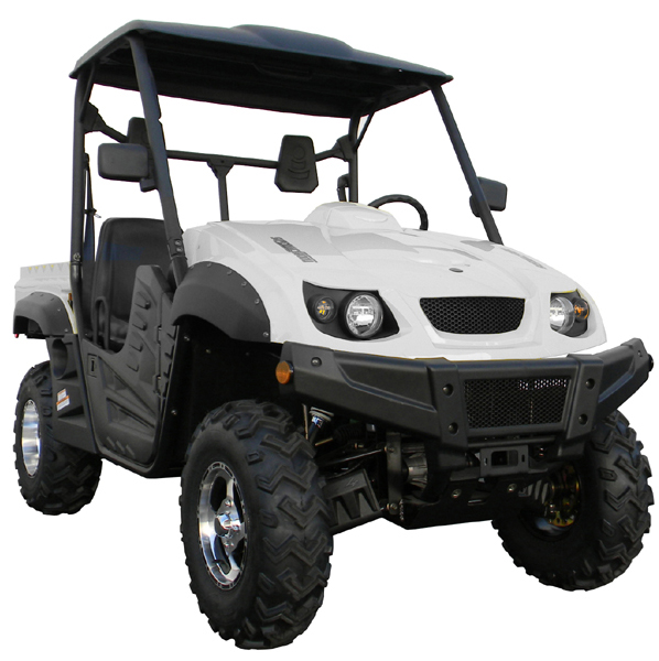 Big Buck UTV 500cc 4WD