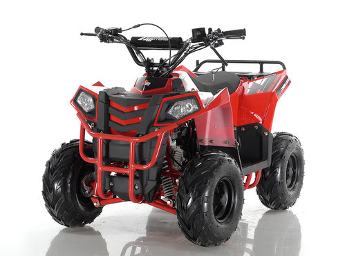 Apollo Mini Commander with reverse 110 ATV