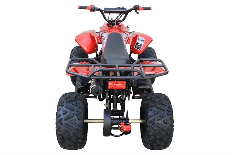 Coolster 125 ATV, Fully Automatic with Reverse, 8 in Wheels (3125-A2)
