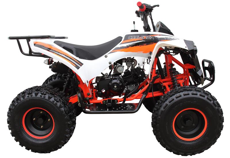 Coolster 125 ATV, Fully-Automatic with Reverse, 8 in Wheels (3125B)