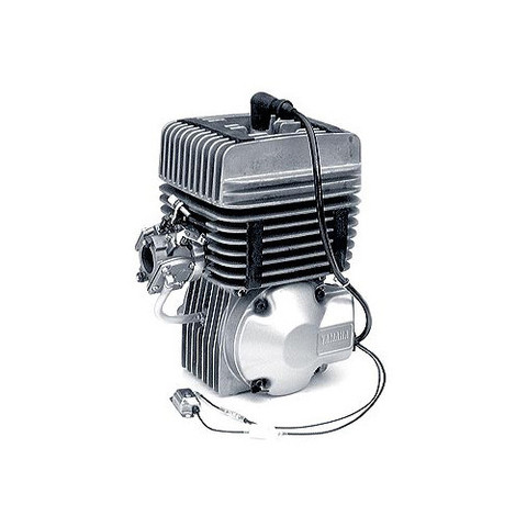 Rotax Max FR 125 Kart Racing Engine