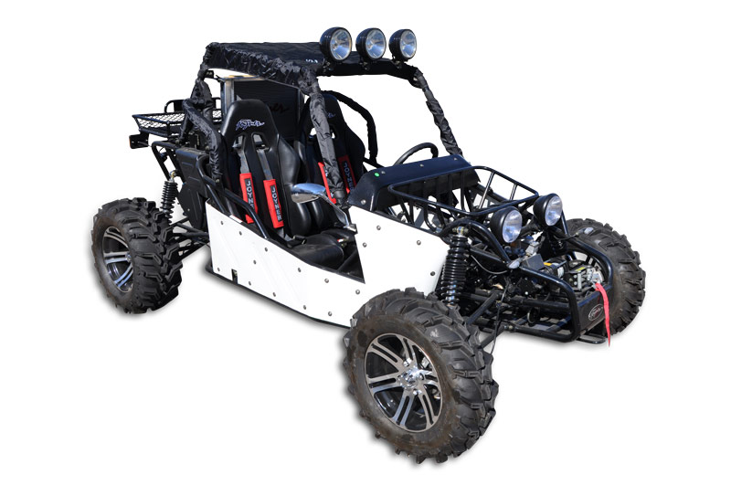 800cc 3 Cyl Buggy - Shop Manual, Owner, Repair and Parts Guide