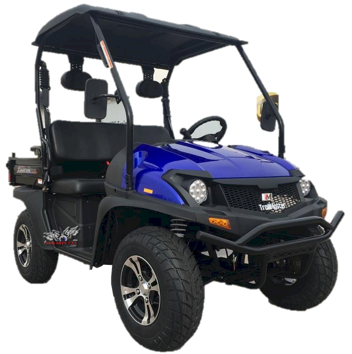 TrailMaster Taurus 200MFV UTV Side by Side, Shaft Drive