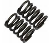 Valve Springs, (Set of 2), for TrailMaster Mid XRX 196 Go Kart