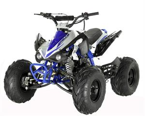 Raptor 125 ATV, Automatic with Reverse, choose 7 or 8 inch Wheels