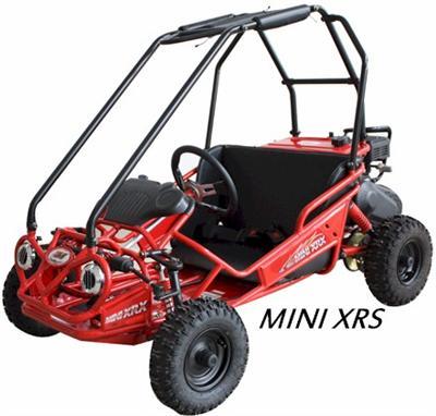 Trailmaster Mini Xrs Kids Buggy Go Kart